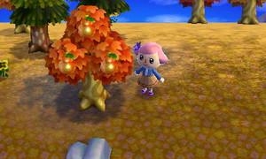 どうぶつ の 森 オレンジ